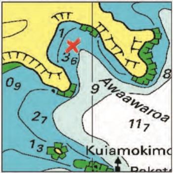 Awaawaroa Bay - Moturua Islands